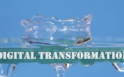 The Opportunity gap of the Digital Transformation